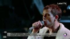 Peter Gabriel - Sledgehammer (Live)